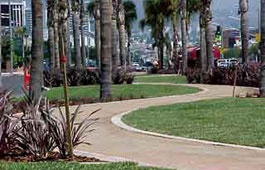 Pathway median at Doheny